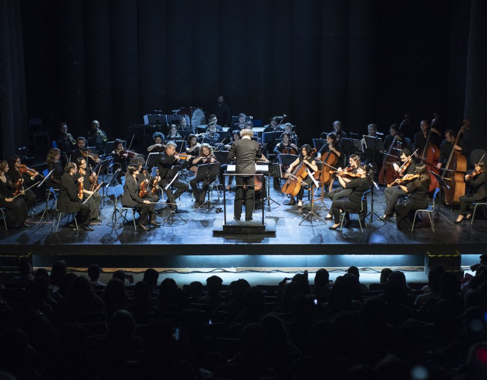 Orquesta USACH-Alejandro Gallardo GaryGo (1)
