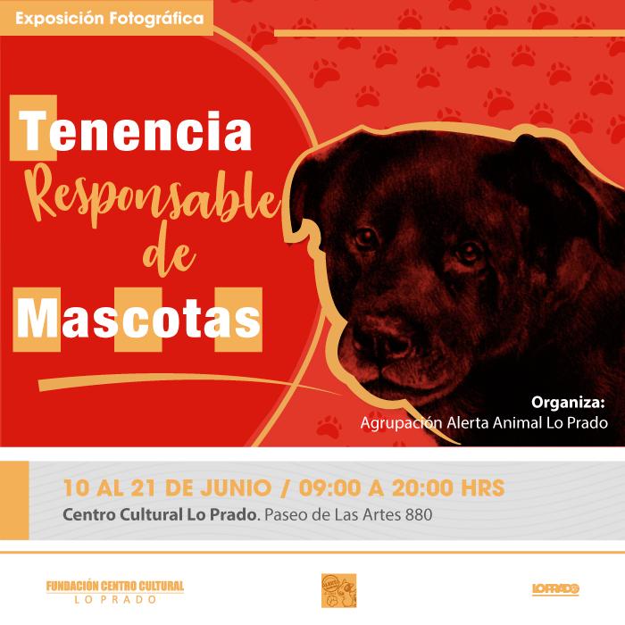 RRSS-Afiche-Tenencia-Responsable-de-Mascotas