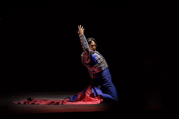 Flamenco WEB